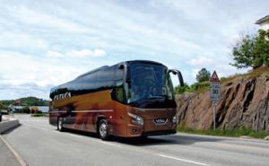 autocar Vaslui olanda